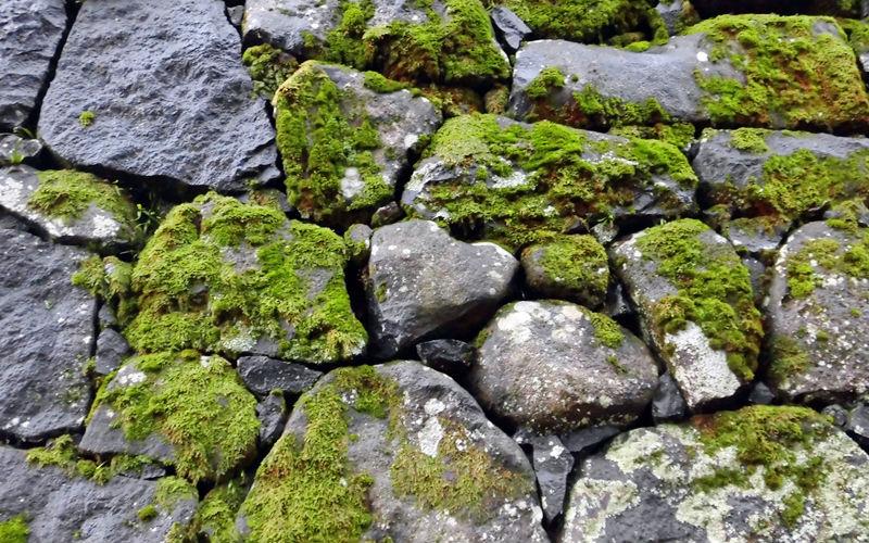 ハートの石垣