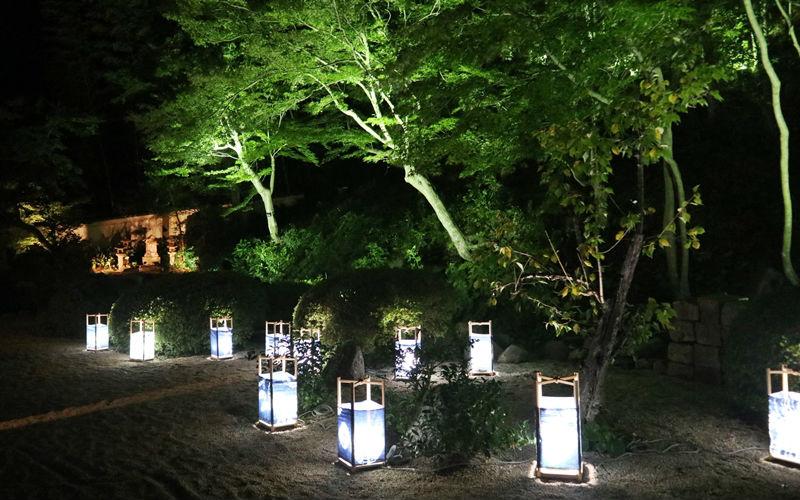 庭園のライトアップ