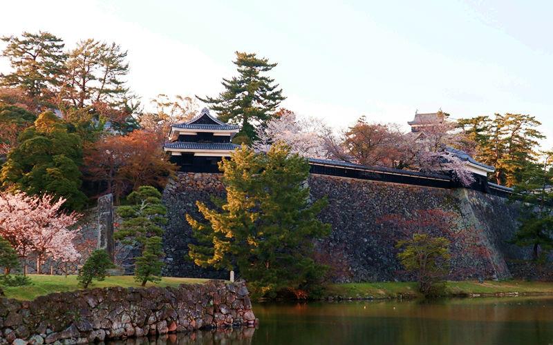 お城とお堀と桜