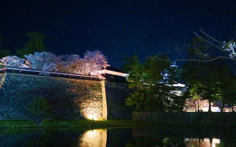 お堀と夜桜
